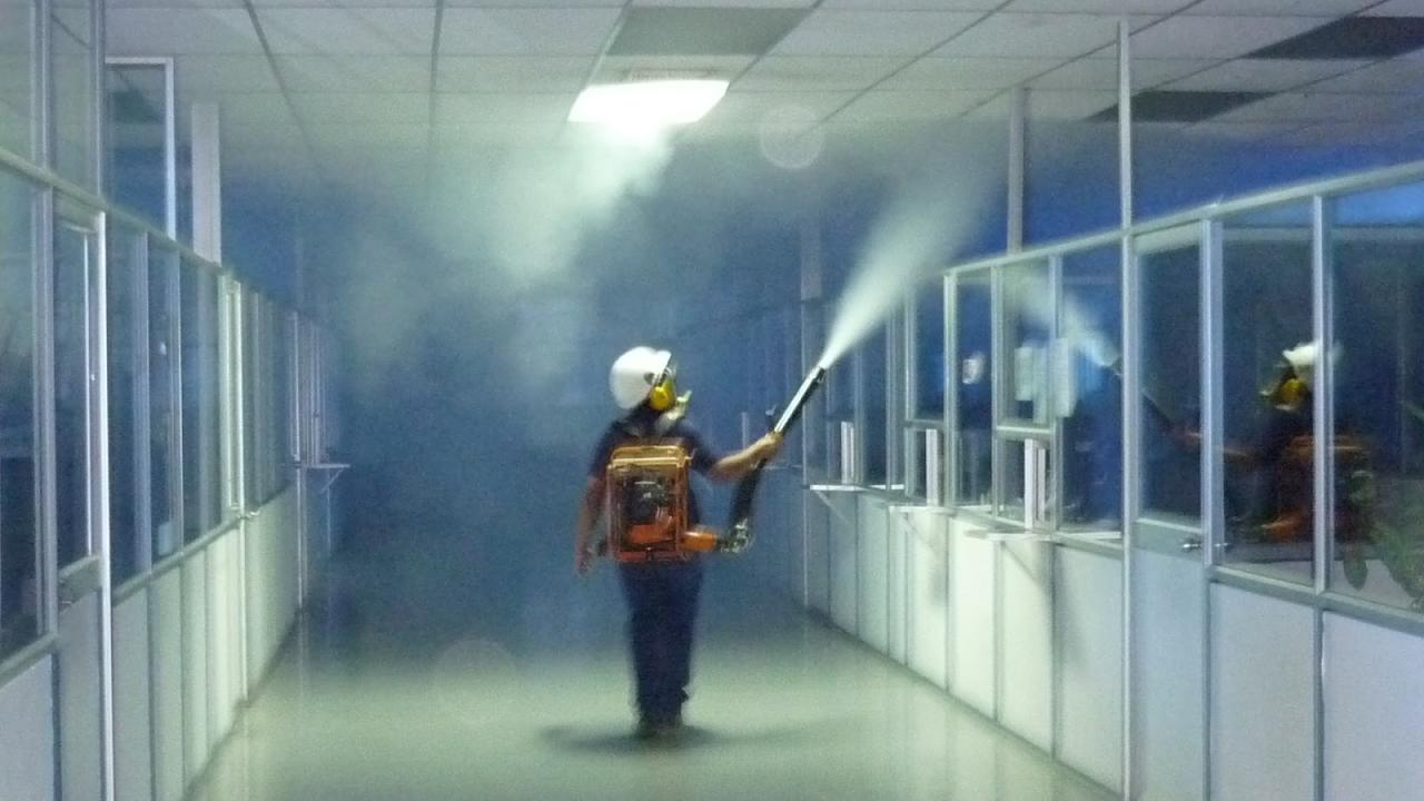 fumigacion control de plagas en barcelona 2020