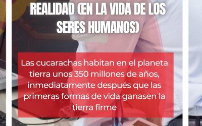 CUCARACHAS: ENTRE SUEÑO Y REALIDAD (EN LA VIDA DE LOS SERES HUMANOS)